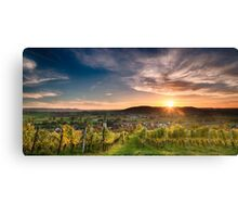 Warm Autumn Sunset on Vineyard Canvas Print