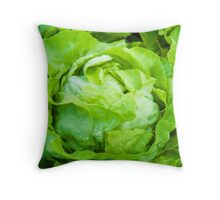 Closeup on fresh wet lettuce in the garden Throw Pillow