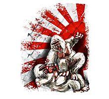 MMA fighting gorillas Photographic Print