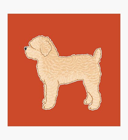 Soft Coated Wheaten Terrier Dog - Red Background / fluffy dog stacked profile side cute pet portrait art artwork Photographic Print
