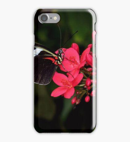 Self~Propelled Flowers ~ 2017-6 iPhone Case/Skin