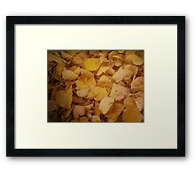 Colorful autumn leaves texture Framed Print