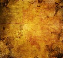 Colorful autumn leaves texture 2 by AnnArtshock