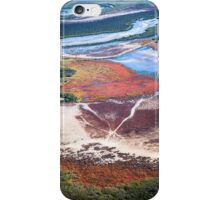 Terra Firma 1/13 iPhone Case/Skin