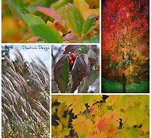 Autumn Aura by DiedrichDesign