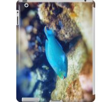 Spotlight On! iPad Case/Skin