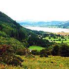 Bassenthwaite Lake Panorama, Cumbria, UK by GeorgeOne
