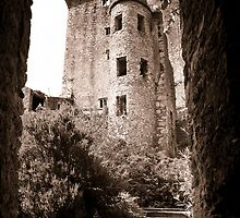 Blarney Castle, Ireland  by Justharry