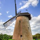 Bembridge Windmill #5 by manateevoyager