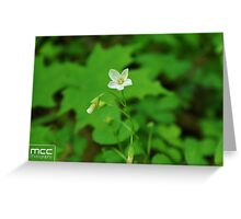 Iphone Case Greeting Card