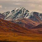 Arctic National Wildlife Refuge - Fall by Melissa Seaback