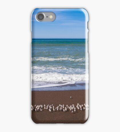 Flock Of Western Snowy Plovers At Moonstone Beach, Ca iPhone Case/Skin