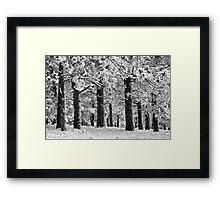 Blue Bell Ridge Framed Print
