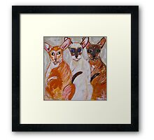 The Brat Pack Framed Print