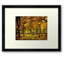 Public Garden, Boston MA Framed Print