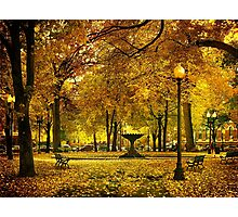 Public Garden, Boston MA Photographic Print
