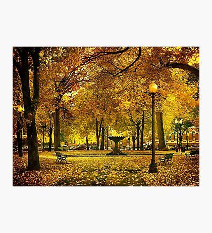 Public Garden, Boston MA Photographic Print
