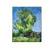 An old willow in a Russian village. Summer Art Print