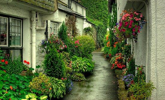 A Hawkshead Alley by Jamie  Green