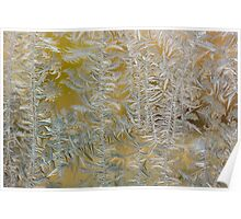 Yellow ice flowers Poster