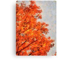 October Orange Canvas Print