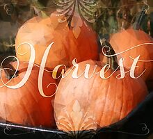 Harvest Time by noondaydesign