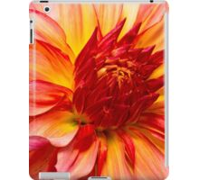 Flower - Dahlia - Natures breath taker iPad Case/Skin