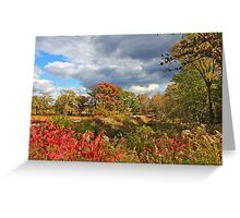 Fall Sinfonia Greeting Card