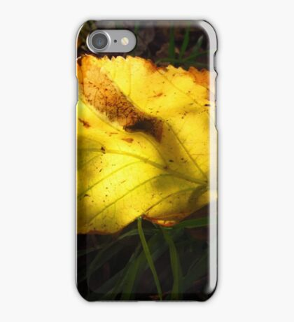 SIGN OF AUTUMN iPhone Case/Skin