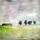 Bucolic Vision by Susan Werby
