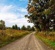Old Country Road by Christina Rollo
