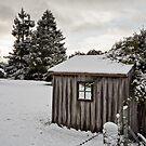 Snow on Vinces Saddle, Tasmania #3 by Chris Cobern