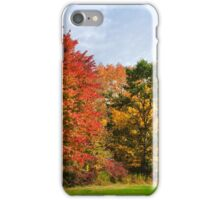 Autumn Colors Fall Trees Landscape Art iPhone Case/Skin
