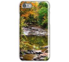 Fall Stream Landscape iPhone Case/Skin