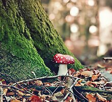 Autumn In The Faery Woods by Denise Abé