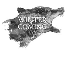 Winter is coming! by 24julien