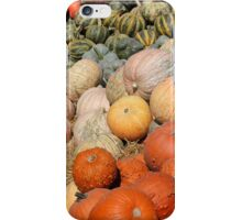 Pumpkins at the Orchard 2 iPhone Case/Skin