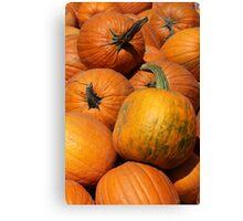 Pumpkin Pile 1 Canvas Print