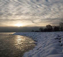 Cold, Moody and Fabulous - a Winter Morning on the Lake Shore by Georgia Mizuleva