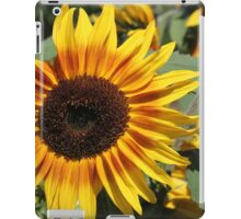 Sunflower 11 iPad Case/Skin