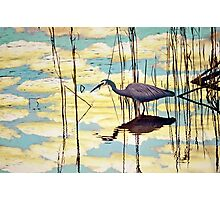 White-faced Heron wading through clouds Photographic Print