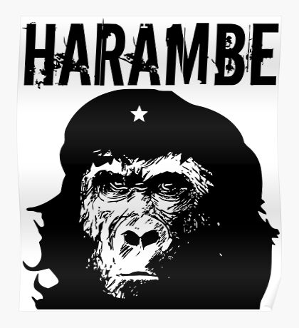 Che Harambe Poster