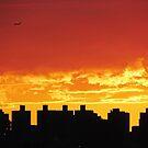 Firey skies over New York City  by Alberto  DeJesus