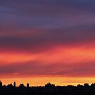 Dusk over New York City  by Alberto  DeJesus