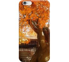 *Blaze of Colour at Trentham* iPhone Case/Skin