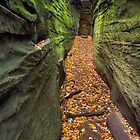 Narrow Crevice by Kenneth Keifer