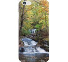 Fall Leaves Meet Waters Meet Point iPhone Case/Skin