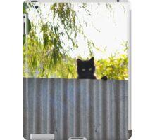 The Rare stray cat iPad Case/Skin