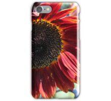 Sunflower 15 iPhone Case/Skin