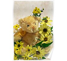 Teddy Bear - Yellow Toto Lemon Rudbeckia Poster